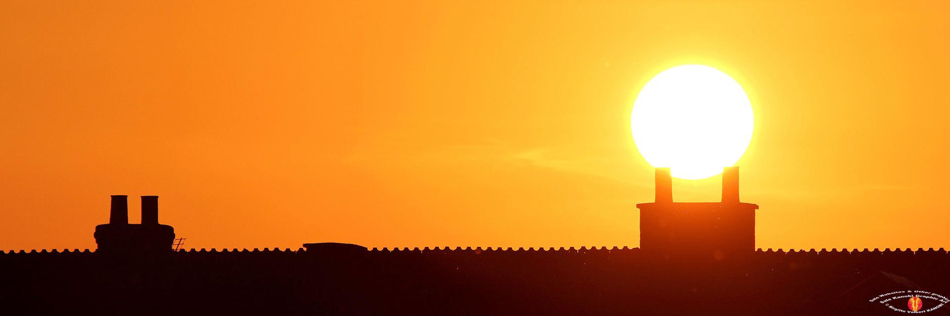Link UK Farmer Shop sunlight ©Kanobi® (4)